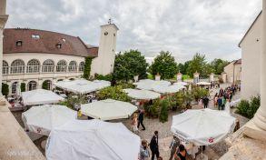 Hochzeit_Katzelsdorf-05