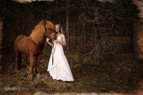 Hochzeit_Pferde_2