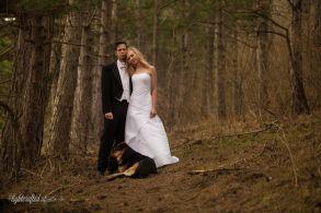 Hochzeit_Pferde_5263