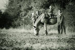 Pferd_und_Familie-0310